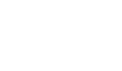 Noble Stein Brewing Company